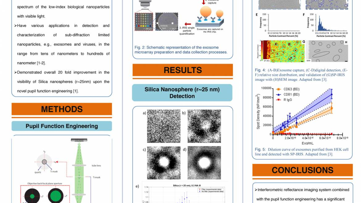 High-visibility detection of exosomes by interferometric reflectance imaging